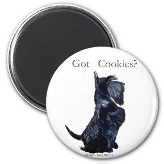 スコッチテリア-得られたクッキーか。 マグネット
