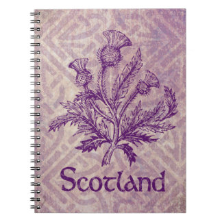 スコットランドのアザミの紫色のケルト結び目模様 ノートブック