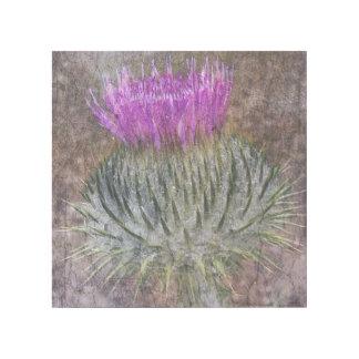 スコットランドのアザミ ギャラリーラップ