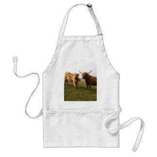スコットランドの高地の牛-緑の牧草地! スタンダードエプロン