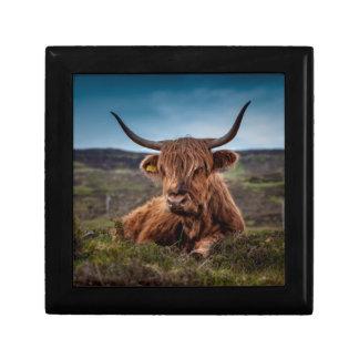 スコットランドの高地の長角牛の牧場主 ギフトボックス
