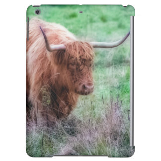 スコットランドの高地牛写真の箱