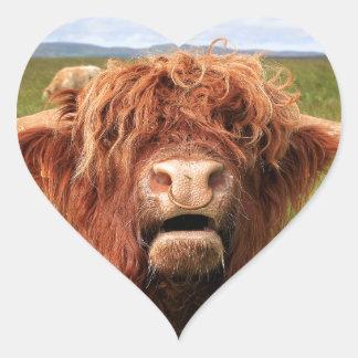 スコットランドの高地牛、スコットランド ハートシール
