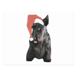 スコットランドテリアのサンタの帽子のクリスマス ポストカード