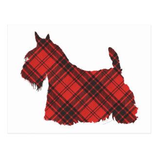 スコットランドテリアのマックスウェルのタータンチェック ポストカード