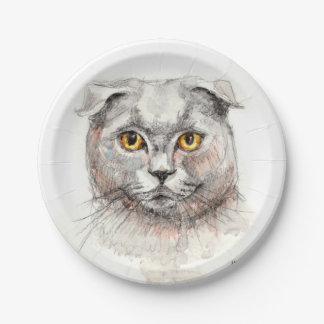 スコットランド人の折目猫 ペーパープレート