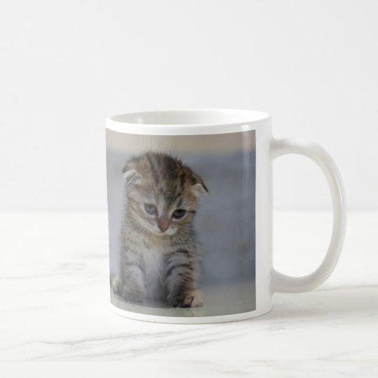 スコティッシュフォールド子猫 マグカップ コーヒーマグカップ
