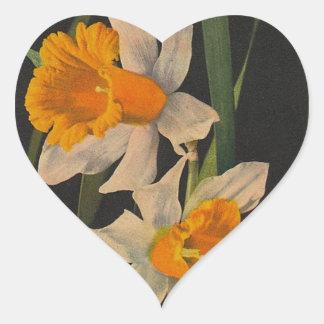 ステッカーのJonquil夜花のラッパスイセンの園芸 ハートシール