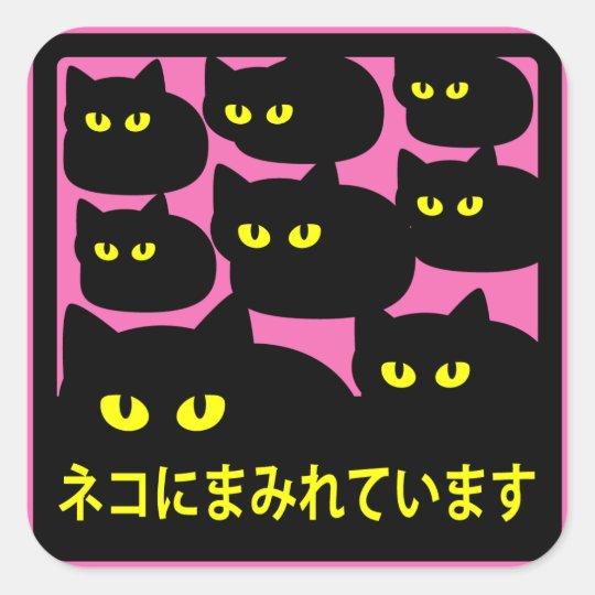 ステッカー 「ネコにまみれています」ピンク スクエアシール