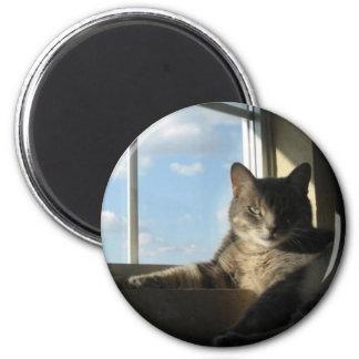 ステラの窓の磁石 マグネット