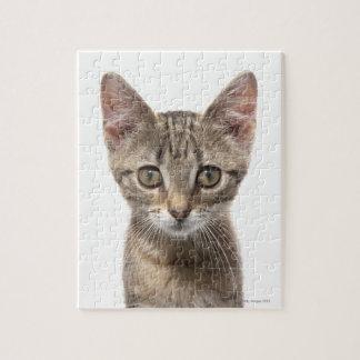ストライプのな子ネコ ジグソーパズル
