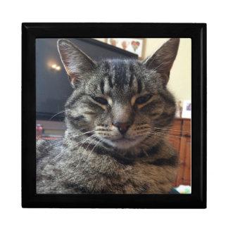 ストライプのな猫 ギフトボックス
