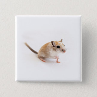 スナネズミのかわいい赤ん坊動物ペットスナネズミのテンプレート 5.1CM 正方形バッジ