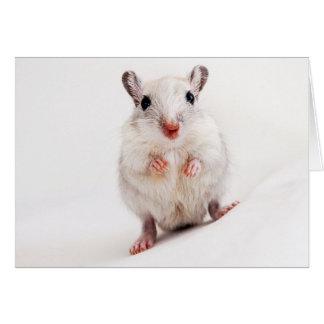 スナネズミのベビー動物のかわいいペットスナネズミのテンプレート カード