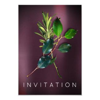 スパイスのイタリアンなシェフの夕食の緑の草木のオーガニックなNoir カード