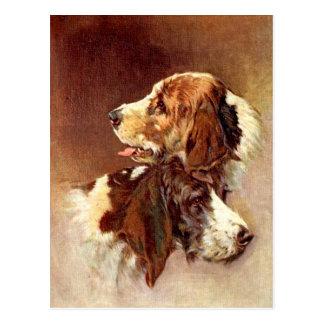 スパニエル犬犬のヴィンテージの芸術のデザイン ポストカード