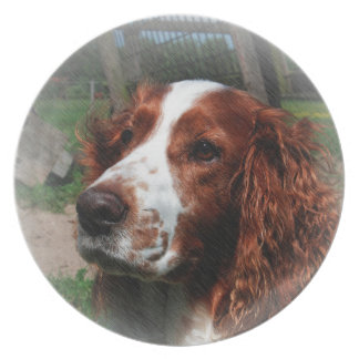 スプリンガースパニエル犬の芸術 プレート