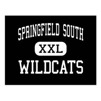 スプリングフィールド南-山猫-高スプリングフィールド ポストカード