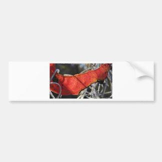 スペインのなコケが付いている赤い葉 バンパーステッカー