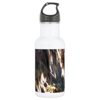 スペインのなコケをおおうことのリブオークの木 ウォーターボトル