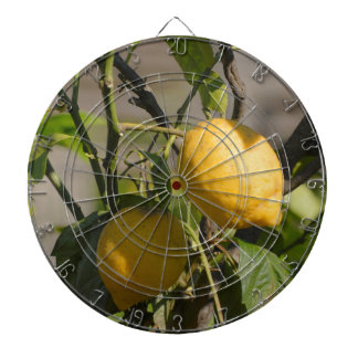 スペインのなレモングラフィック ダーツボード