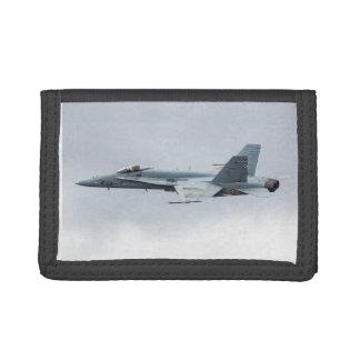 スペインのな空軍F-18