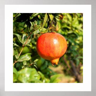 スペインの木のザクロ ポスター