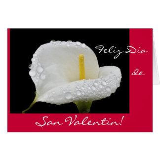 スペイン語: バレンタインデー/サンValentin カード