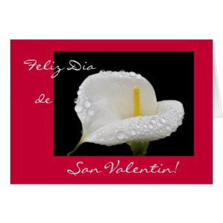 スペイン語: バレンタインデー/Dia deサンValentin カード
