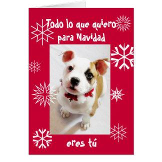 スペイン語: 私によってがクリスマスのために…ほしいすべてはです カード