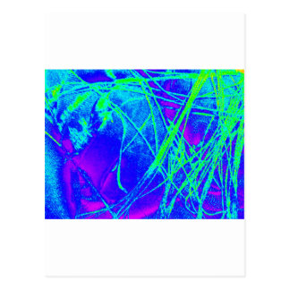 スペクトルの生地 ポストカード