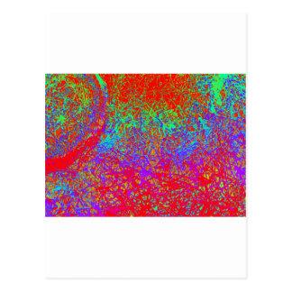 スペクトル象 ポストカード