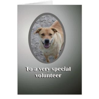 スペシャルのボランティアは感謝していしています カード
