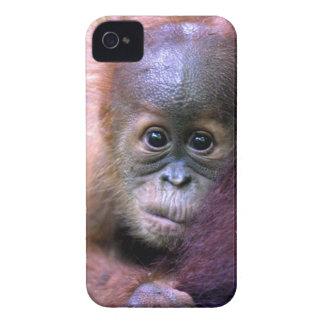 スマトラのかわいいベビーのオランウータン Case-Mate iPhone 4 ケース