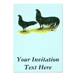 スマトラの黒い鶏 カード