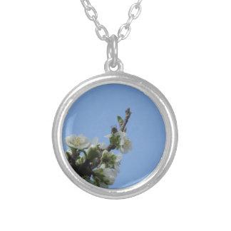 スモモの木の蜂のimpollinatesの花 シルバープレートネックレス