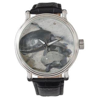 スライダーのカメの続けて写真 腕時計