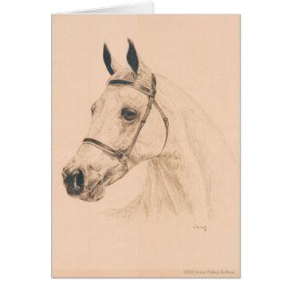 スーザンPelisek Kolberg著馬のスケッチ カード