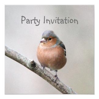 ズアオアトリのパーティの招待状 13.3 スクエアインビテーションカード