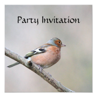 ズアオアトリの招待状 カード