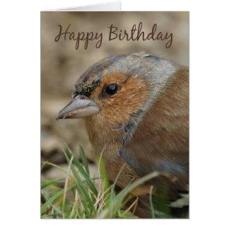 ズアオアトリの誕生日の挨拶状-野生の庭Bir カード