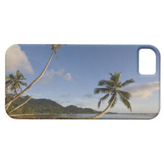 セイシェルのMaheの島、横のやし、 iPhone SE/5/5s ケース