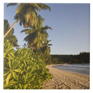 セイシェルのMaheの島、Anse Takamakaのビーチ、 タイル