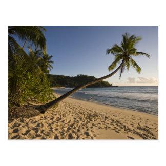 セイシェルのMaheの島、Anse Takamakaのビーチ、 ポストカード