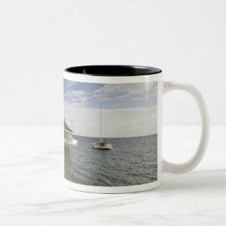 セイシェルのPraslinの島、Anse Bois de Rose、 ツートーンマグカップ