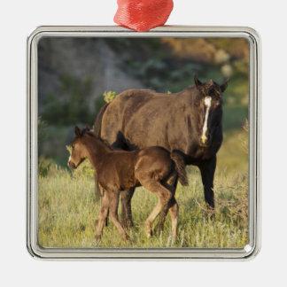 セオドア・ルーズベルトの国立公園の野生の馬 メタルオーナメント