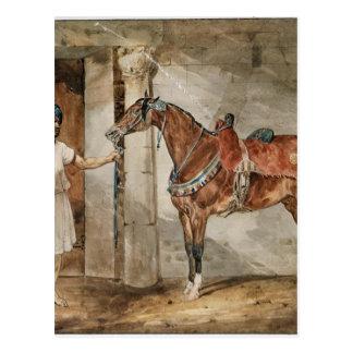 セオドアGericault著馬(東) ポストカード