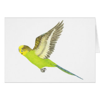 セキセイインコの飛行- Melopsittacusのundulatus カード