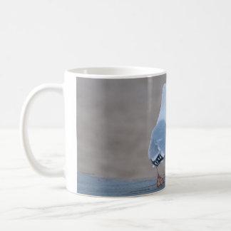 セグロカモメ コーヒーマグカップ