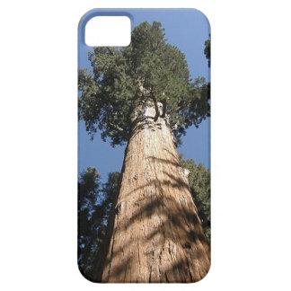 セコイアオスギの木はあなたの電話を保護します iPhone SE/5/5s ケース